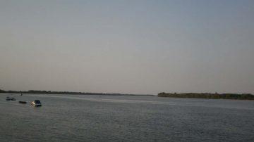Dunav kod Vinče